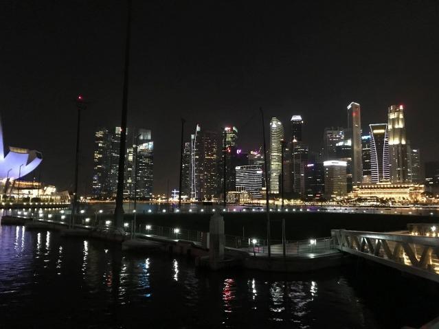 シンガポール夜